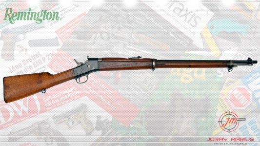 roling-block-gewehr-remington-1901-21022019