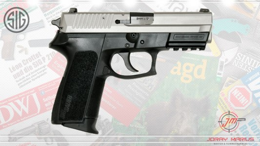 sig-sp2022-two-tone-07092017